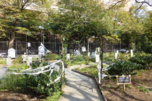 the haunted community garden... ready for visitors